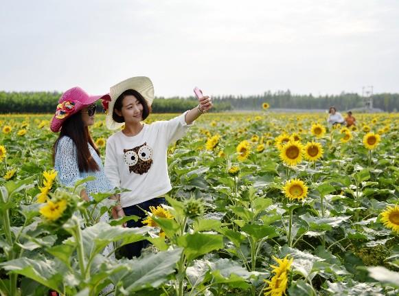 祥丰现代生态农业示范园