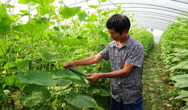 市农业农村局举办贫困户种植技术培训