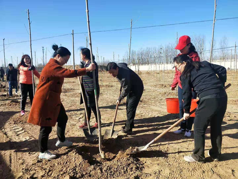 履行植树义务建设美丽定州———我市春季义务植树活动见闻