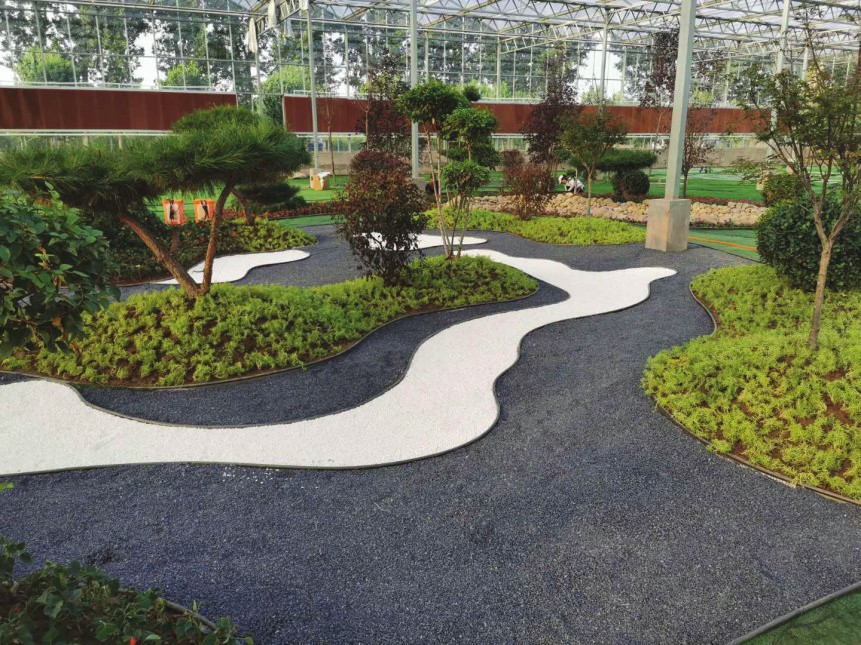 2020中国(定州)苗木花卉园林博览会分会场风采展示