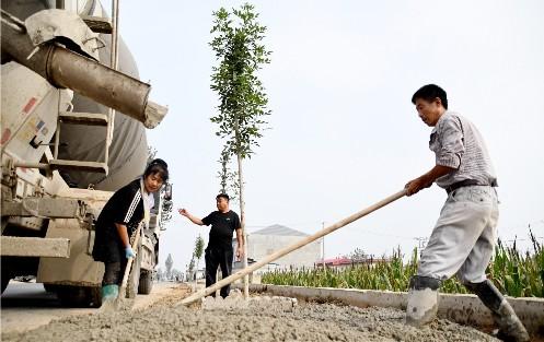 """庞村镇:路域环境整治提升乡村""""颜值"""""""
